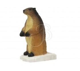 Cible 3D SRT Marmotte