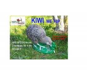 Cible 3D NATURFOAM Kiwi