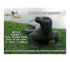 Cible 3D NATURFOAM Dragon...