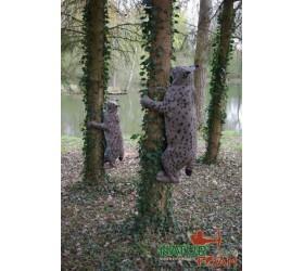 Cible 3D NATURFOAM Lynx...