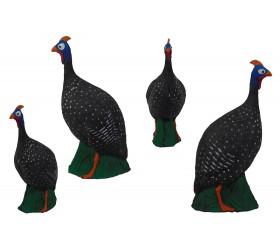 Cible 3D IMAGO Guinea Fow
