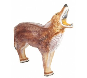 Cible 3D CENTER POINT Coyote