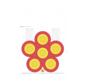Blason PRACTICE 40 CM 6-SPOT PAPIER ARME