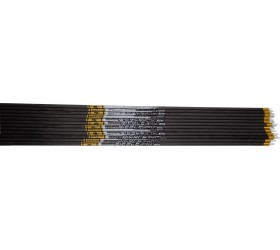 Tube Gold Tip Pierce Platinium par 12
